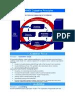 ISO 9001 Operative Principes