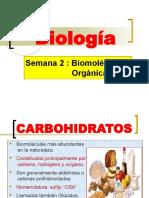 Carbohidratos, Lipidos y Acidos Nucleicos
