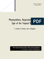 Photosynthesis, Respiration, and Plant Type of the Tropical Rice Plant (TB7)