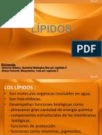 LIPIDOS-convertido.pptx