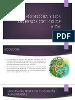 La Ecologia y Los Diversos Ciclos de Vida