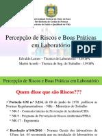Percepção de Riscos e Boas Praticas Em Laboratório Final