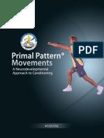 Primal pattern - Paul check.pdf