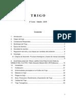 Trigo _2019