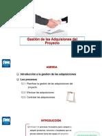 10. Gestión de las Adquisiciones.pdf