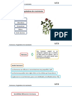 Clase 15. Hormonas vegetales.pptx