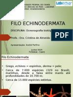 Echinodermata.pptx