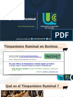 Timpanismo primario y secundario.
