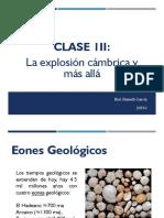 Clase III - Extinciones