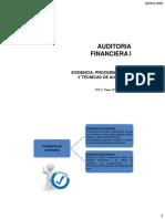 AF_Evidencia, Procedimientos y Técnicas de Auditoria (1)