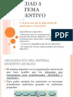 unidad-3-sistema-digestivo-1196218947450726-5