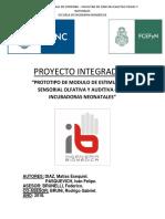 Proyecto Integrador. DIAZ - PASQUEVICH.pdf