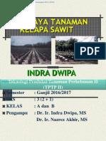 Perkebunan II Untuk Repo Ganjil 2017-2018