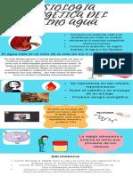 Fisiología Energética Del Reino Agua.pdf
