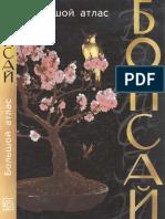 Atlas Bonsai