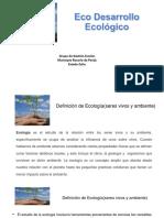 Eco Desarrollo Socialista Nersida Montiel