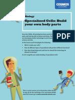 Lesson_050_handout.pdf