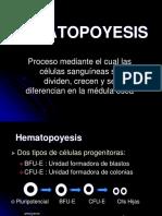 5. Hematopoyesis (1)