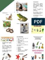 tico-Vertebrados-e-Invertebrados.docx