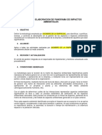Instructivo Elaboracion de Panorama de Impactos Ambientales