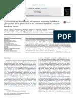 Vaccination With Recombinant Adenoviruses Expressing Ebola Virus