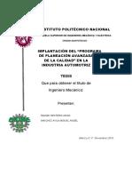 Implementacion Del Programa de Planeacion Avanzada de La Calidad en La Industria Automotriz