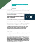 taller epistemológia.docx