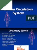 Circulatory Ppt