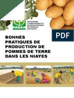 BONNES PRATIQUES DE PRODUCTION DE POMMES DE TERRE DANS LES NIAYES