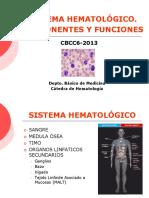 2018 Introducciobnhematologia 2 130819183515 Phpapp02