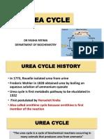 Urea cycle