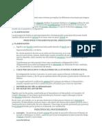 PRINCIPIOS DEL CGP