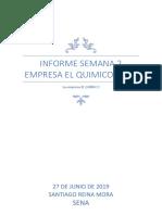 Informe Semana 2 Empresa El Quimico Caso