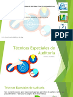 Técnicas Especiales de Auditoria2