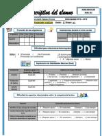FICHA DESCRIPTIVA BAJO RENDIMIENTO VIC.docx
