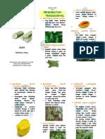 Leaflet Ramuan Tradisional Hipertensi