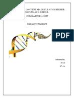 Deoxyribo Nucleic Acid