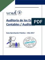 Auditora Gua Prctica