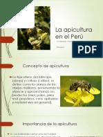 La apicultura en el Perú.pptx