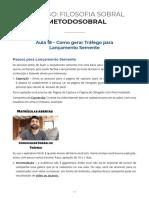 Live_018_-_Gesta_o_de_tra_fego_para_um_lanc_amento_semente.pdf