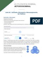 Live_020_-_Hierarquia_exclus_o_e_remanejamento_de_p_blicos.pdf