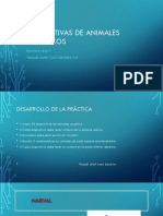 Diapositivas de Animales Acuáticos