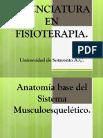 Osteologia del miembro superior