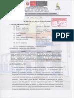 SILABUS+DE+OPCIONAL+SEMINARIO+WILMER