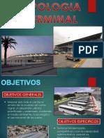 Terminal Terrestre