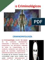 FACTORES CRIMINOGENOS