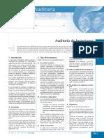 auditoria de inversiones.pdf