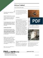 Guías urbanas Universidad de California - Arañas Viuda Negra.en.es