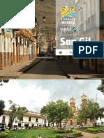 PlanDeAccion_SanGil_2014.pdf