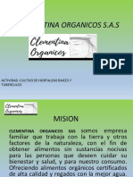 Clementina Organicos s (1)